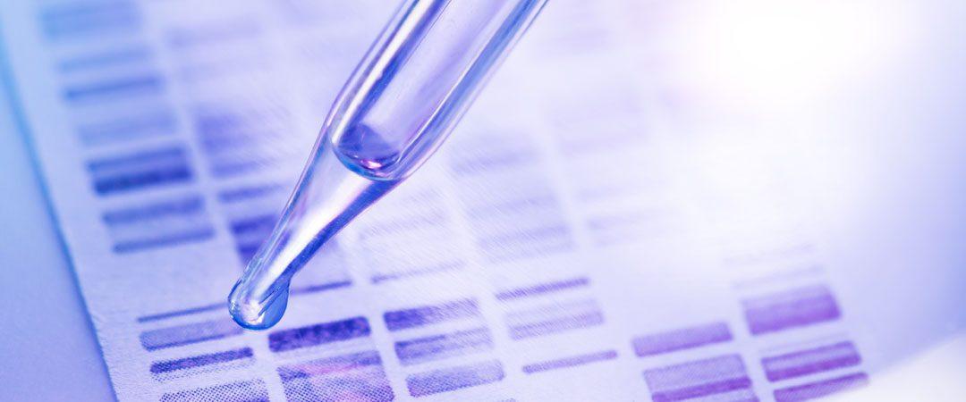 Fertilización in vitro versus reanastomosis tubárica